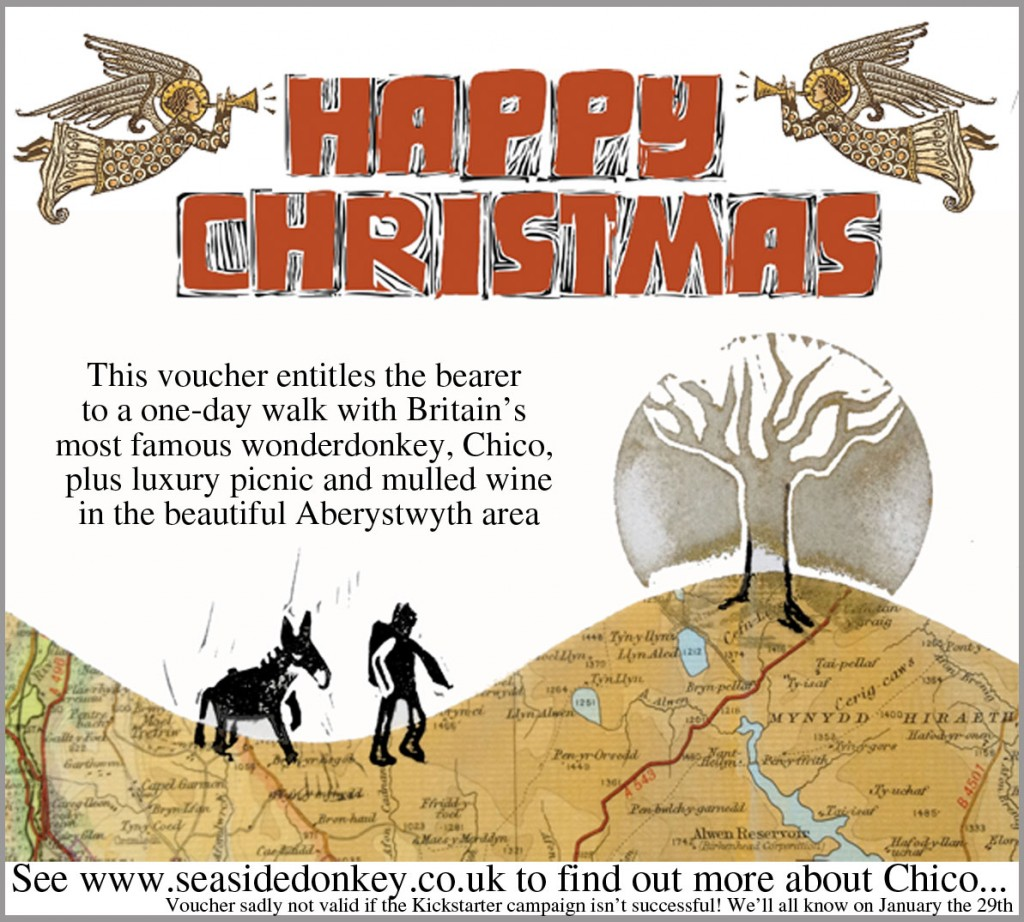 Christmas-voucher---book