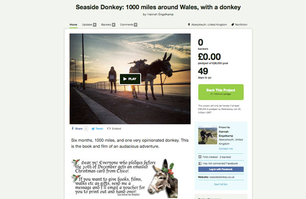 Become seaside donkey's publisher!