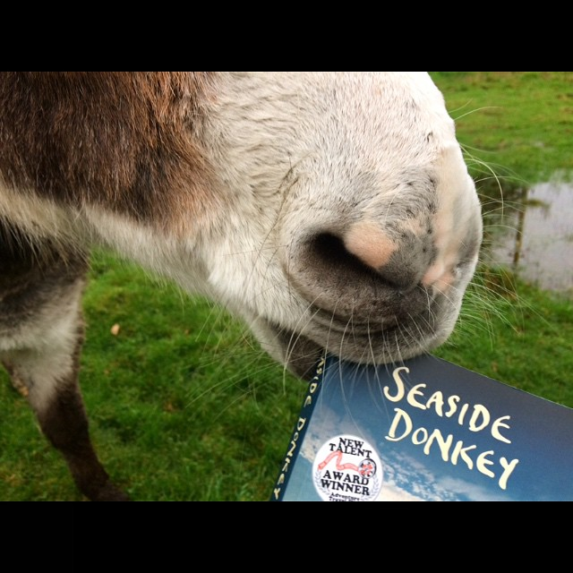 Taste-tested by Wales's favourite donkey