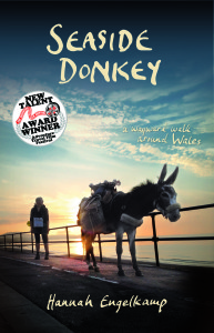 SEASIDE DONKEY COVER