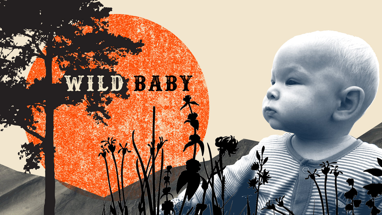 Wild-Baby-slide